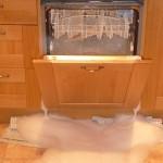 dishwasher with washing up liquid inside